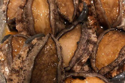 ほどほど屋エイトの美味しいは楽しいのDELICIOUSISFUNの指扇の居酒屋の自然栽培のたかやま農園の新鮮な魚の安心安全な食材のアレルギー対応の子連れでも安心の石臼挽きの自家製粉の在来種の固定種の手打ちの十割蕎麦のアットホームの未来のこどもたちの寄り合いの横につながるのグルメの駅から徒歩10分の老若男女の自然食のオーガニックの無添加の自家製の自家栽培の自家採種のサンスマイルのかぎろひのみんなで保育ととの自主保育の地域での子育ての親子で楽しくの駐車場有りの固定種の伝統野菜の種取りのわがらしの和がらしのかずがらしのとんかつのハンバーグの薩摩放牧黒豚のリビセンの自家製明太子の自家製調味料のまるおかのミコト屋のりんねしゃのpurveyorsの