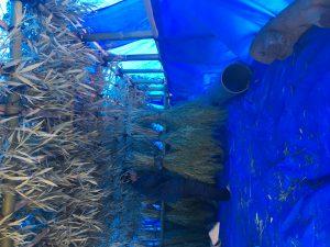 ほどほど屋エイトの美味しいは楽しいのDELICIOUSISFUNの指扇の居酒屋の自然栽培のたかやま農園の新鮮な魚の安心安全な食材のアレルギー対応の子連れでも安心の石臼挽きの自家製粉の在来種の固定種の手打ちの十割蕎麦のアットホームの未来のこどもたちの寄り合いの横につながるのグルメの駅から徒歩10分の老若男女の自然食のオーガニックの無添加の自家製の自家栽培の自家採種のサンスマイルのかぎろひのみんなで保育ととの自主保育の地域での子育ての親子で楽しくの駐車場有りの固定種の伝統野菜の種取りのわがらしの和がらしのかずがらしのとんかつのハンバーグの薩摩放牧黒豚のリビセンの自家製明太子の自家製調味料のまるおかのミコト屋のりんねしゃのpurveyorsのクッキークルの森道市場のブラウンズフィールドの